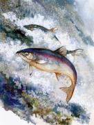 Falls Paintings - Silver Salmon by Peggy Wilson