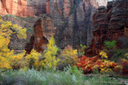 Gold Leaves Framed Prints - Sinawava temple in Zion Framed Print by Pierre Leclerc