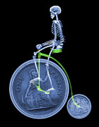 Penny Farthing Prints - Skeleton On A Penny Farthing Print by D. Roberts