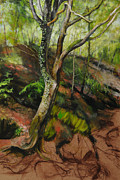 Harry Robertson - Sketch of a Treetrunk