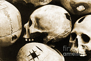 Brain Surgery Prints - Skulls Showing Trepanation Print by Science Source