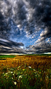 Inspired Art - Sky High by Phil Koch