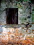 Slaves Metal Prints - Slave House Window Metal Print by Angela Pari  Dominic Chumroo
