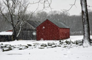 Red Barns Framed Prints - Snow Barns Framed Print by Ross Powell