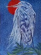 Shahid Muqaddim - Snow Bird