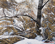 Brunch Paintings - Snow grass by Jack Tzekov