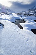 Snow-covered Landscape Photo Posters - Snowy Landscape, Scotland Poster by Duncan Shaw