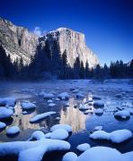 Howell Posters - Snowy Yosemite Valley Poster by Michael Howell - Printscapes