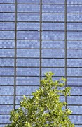 Array Posters - Solar Panels Poster by Gombert, Sigrid