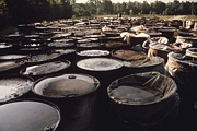 Sewage Art - Some Of 3 000 Drums Containing by Everett
