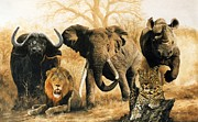 Bush Wildlife Paintings - South Africas Big five by Yvette Mey