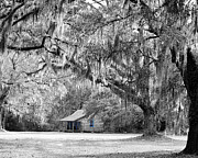 Shack Digital Art Prints - Southern Shade Selective Color Print by Al Powell Photography USA