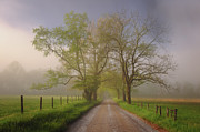 Cades Cove Photo Posters - Sparks Lane Poster by Joseph Rossbach