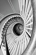 Spiral Staircase Photos - Spiral Staircase Lowndes Grove by Dustin K Ryan
