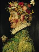 1563 Framed Prints Posters - Spring Poster by Giuseppe Arcimboldo