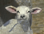 Barn Yard Metal Prints - Spring Lamb Metal Print by John  Reynolds
