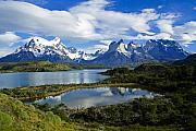 Springtime In Patagonia Print by Michele Burgess