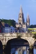 City Of Bridges Posters - St. Finbarres Cathedral, Cork, Co Cork Poster by The Irish Image Collection 