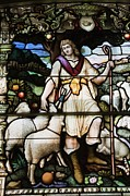 Animal Place Posters - Stained Glass Window Depicting A Religious Scene In Cathedral Of The Holy Trinity Poster by Design Pics / Perry Mastrovito