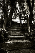 Walking Pyrography Prints - StairWay Print by Gary Horn