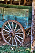 Country Scenes Art - Standing The Test Of Time by Jan Amiss Photography