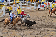 Steer Photos - Steer wrestling on a wet and muddy afternoon at the Calgary Stampede by Louise Heusinkveld
