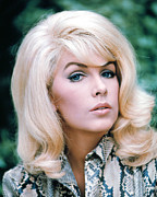 1960s Hairstyles Photos - Stella Stevens, 1960s by Everett