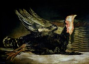 Turkey Painting Metal Prints - Still Life Metal Print by Goya