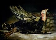 Still Life Print by Goya