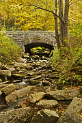 Smokey Mountains Framed Prints - Stone Bridge 6063 Framed Print by Michael Peychich