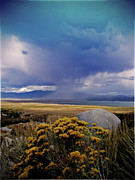 Crowley Lake Art - Storm Cell Over Crowley Lake by Tina Slee