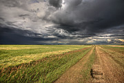 Hay Bales Digital Art Posters - Storm clouds over Saskatchewan Poster by Mark Duffy