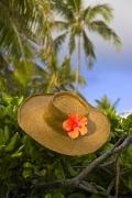 Outdoor Still Life Art - Straw Hat Still Life by David Cornwell/First Light Pictures, Inc - Printscapes