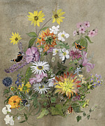 Butterflies Painting Prints - Summer Flowers Print by John Gubbins