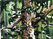 Olive Green Prints - Summer Tree Print by Mindy Newman