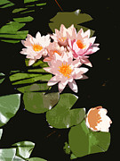 Lilly Pond Paintings - Sunbathers by Sharon Mello