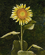 Sunflower Oil Paintings - Sunflower in the Night by Mary Ann King
