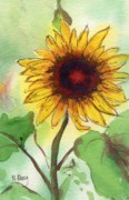 Sunflower Paintings - Sunflower by MaryAnn Cleary