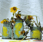 Painted Glass Prints - Sunflowers .Helianthus annuus Print by Bernard Jaubert