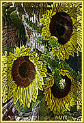 Photomanipulation Prints - Sunflowers Print by Mindy Newman