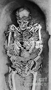 Skeletal Posters - Sunghir Remains Poster by Science Source