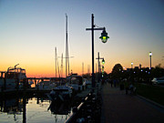North Carolina Posters Framed Prints - Sunset Streetlights on the Pamlico Framed Print by Matthew Moore Jr