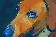 Cute Dogs Digital Art - Sweet Expression by Stacy Moore