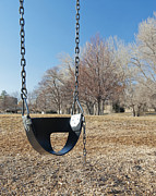 Bare Trees Metal Prints - Swing Set on a Grass Field Metal Print by Thom Gourley/Flatbread Images, LLC