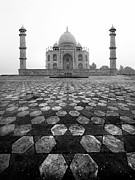 India Metal Prints - Taj Mahal Metal Print by Nina Papiorek