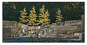 Winter Trees Tapestries - Textiles - Tamarack by Lorraine Roy