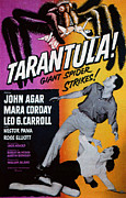 Tarantula Prints - Tarantula, John Agar, Mara Corday, 1955 Print by Everett