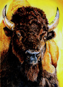Tatanka Print by Robert M Walker