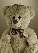 Innocent Photo Prints - Teddy bear Print by Blink Images