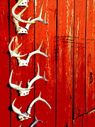 Deer Camp Framed Prints - Teller Of Tales Framed Print by Joe JAKE Pratt